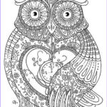 Adult Coloring Pages Owls Best Of Stock Hoot Owl Coloring Page Free Printable Coloring Pages Hard