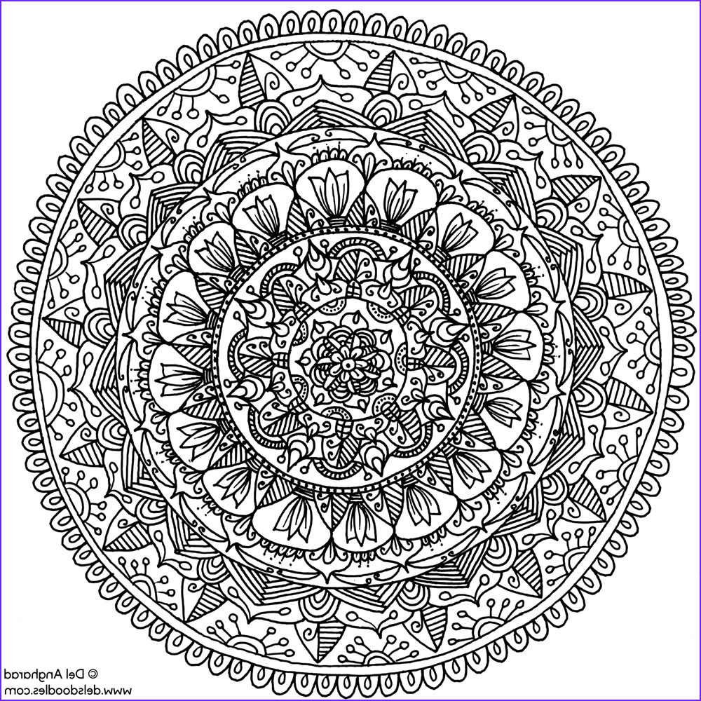 everything you need to know about adult coloring