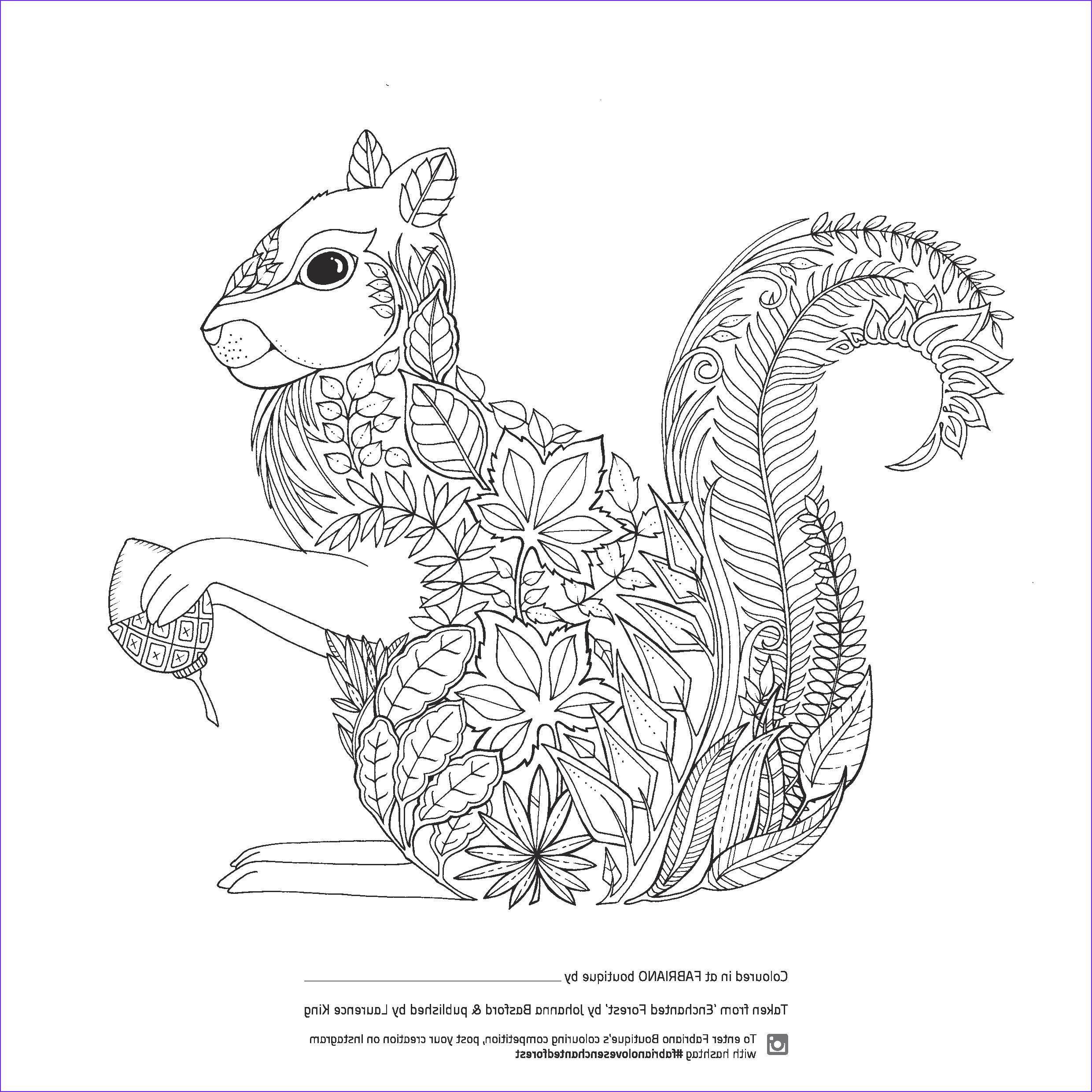 enchanted forest colouring
