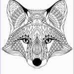 Adult Coloring Pages Printables Beautiful Photos 20 Free Adult Colouring Pages The Organised Housewife