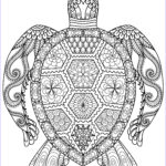 Adult Coloring Pictures Elegant Collection Adult Coloring Pages Animals Best Coloring Pages For Kids