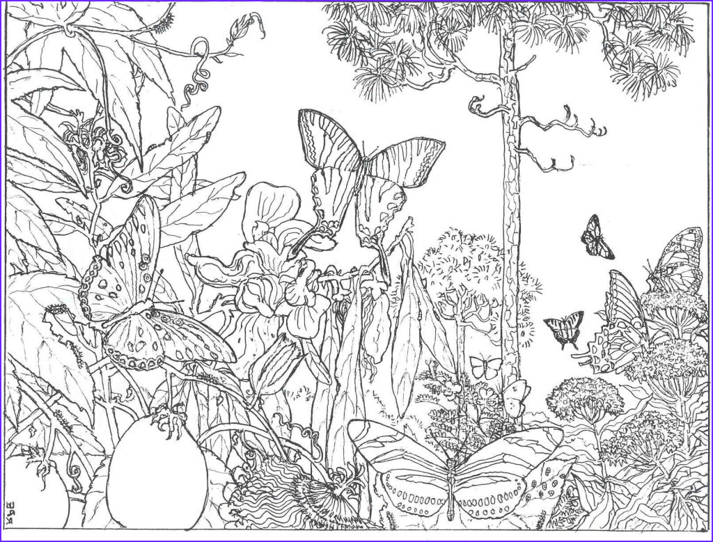 Adult Coloring Pictures Unique Gallery Coloring Pages for Adults Free Printable 42 Collections