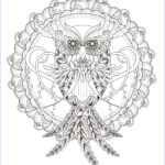 Adult Coloring Pictures Unique Gallery Owl Coloring Pages For Adults Free Detailed Owl Coloring