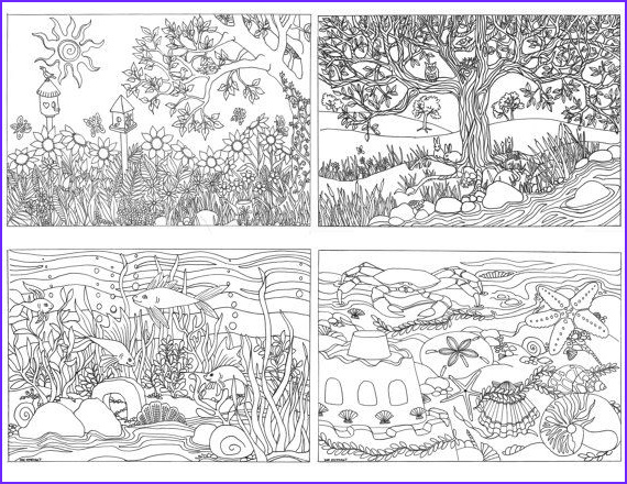 Adult Coloring Set Unique Collection Printable Set Of 4 assorted Nature Scenes by