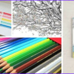 Adult Coloring Supplies Best Of Stock The Essential Books And Art Supplies For Every Adult