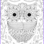Adult Themed Coloring Books Luxury Image 50 Adult Coloring Book Pages Free And Printable