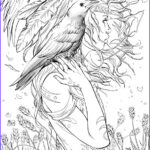 Adults Coloring Book Images Luxury Photos Legend Of Oz Wicked West 3 Lines By Toolkitten On Deviantart