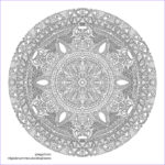 Advanced Mandala Coloring Pages Luxury Photography Expert Coloring Pages Printable Coloring Home