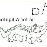 Alligator Coloring Sheet Beautiful Collection Free Printable Alligator Coloring Pages For Kids