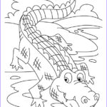 Alligator Coloring Sheet Beautiful Photos Coloring Page Animals For Kids Crocodiles Coloring