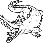 Alligator Coloring Sheet Luxury Stock Free Printable Crocodile Coloring Pages For Kids
