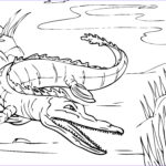 Alligator Coloring Sheet Unique Collection Free Printable Alligator Coloring Pages For Kids