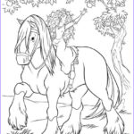 Alpha And Omega Coloring Pages Beautiful Gallery Alpha And Omega Pups Coloring Pages Coloring Pages