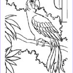 Alphabet Coloring Book New Image P Letters Alphabet Coloring Pages