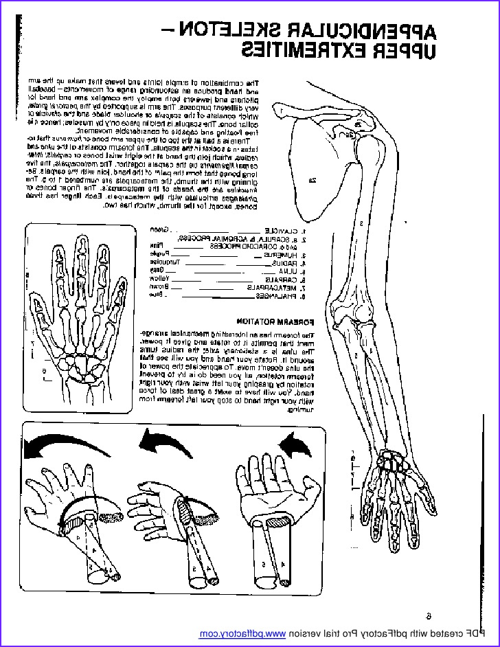 Anatomy Coloring Books New Photos Anatomy Coloring Book Dover