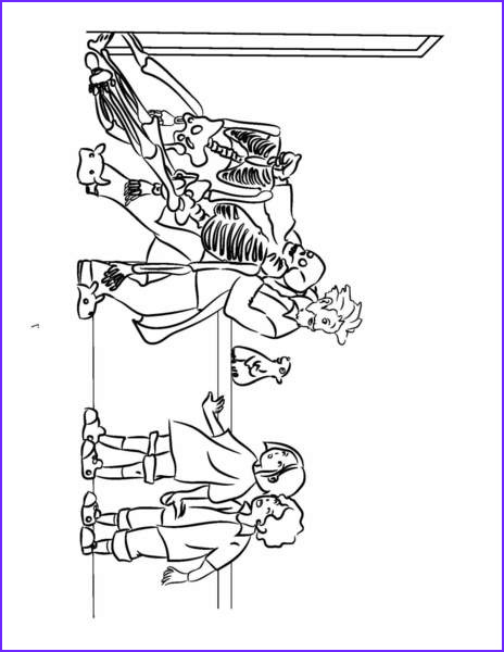 anatomy coloring pages