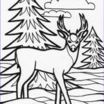 Animal Coloring Books Cool Photos For Education New Animal Deer Coloring Pages