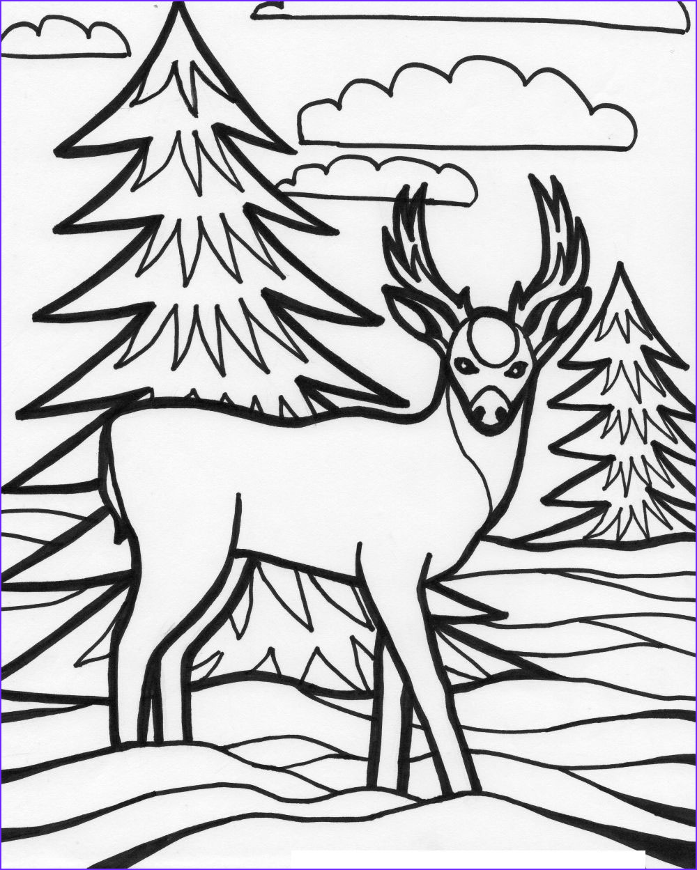 for education new animal deer coloring