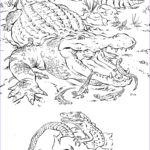 Animal Coloring Books Luxury Photos Realistic Alligator Coloring Pages
