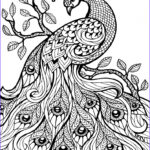Animal Coloring Pages For Adults Beautiful Collection Animal Coloring Pages For Adults Printable