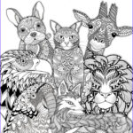 Animal Coloring Pages For Adults Beautiful Gallery 1070 Best Images About Adult Colouring Animals Zentangles