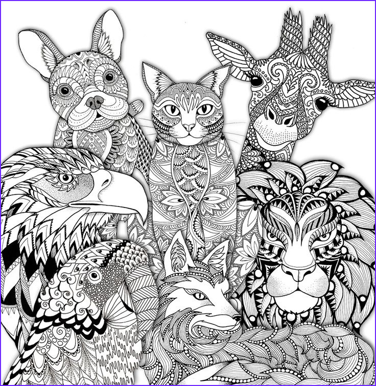 adult colouring animals zentangles