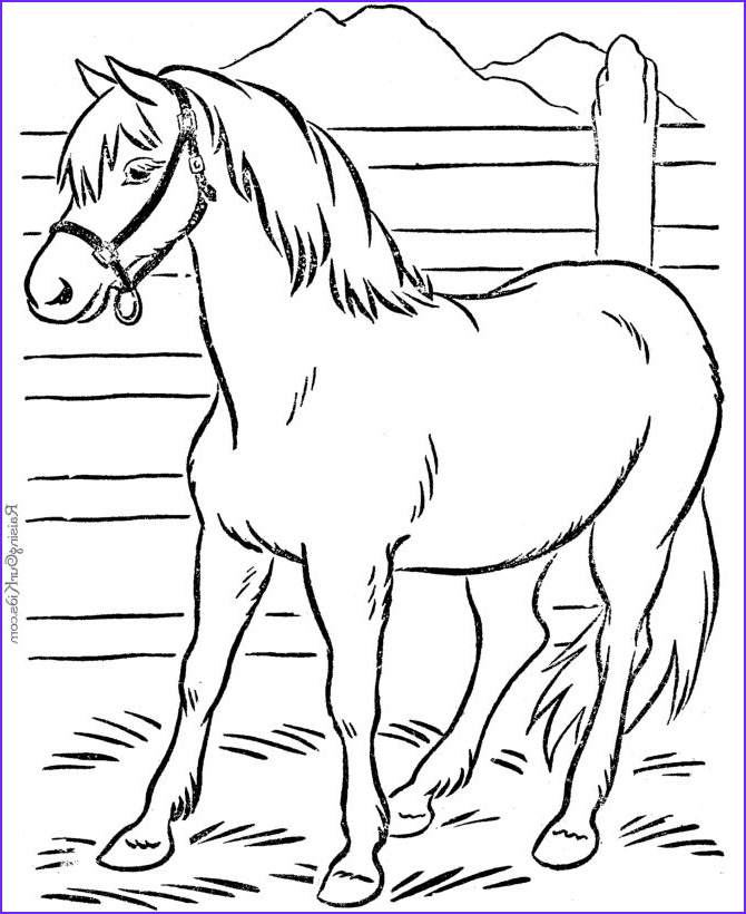 Animal Coloring Pages Printable Beautiful Photos Animal Coloring Page Of Horse to Print