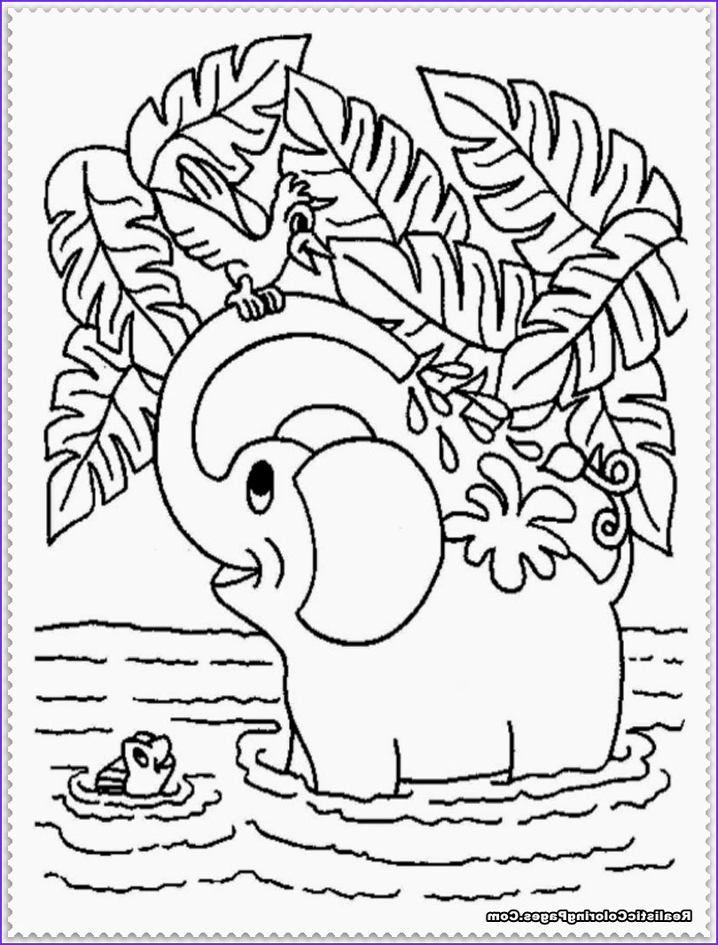 Animal Coloring Pages Printable Inspirational Photos Realistic Jungle Animal Coloring Pages