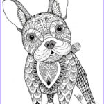 Animal Mandala Coloring Book Best Of Collection 986 Best Animal Coloring Pages Doodle Images On Pinterest