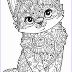 Animal Mandala Coloring Book Best Of Stock Pin On Domestic Cats N Kittens