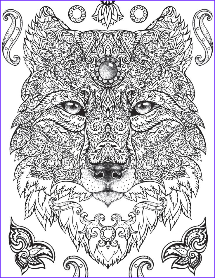 Animal Mandala Coloring Book Luxury Images Pin by Studio Fun & Silver Dolphin Books On Silver Dolphin