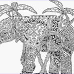Animal Mandala Coloring Pages New Image 9 Best Of Animal Mandala Coloring Pages Bestofcoloring