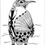 Animals Coloring Page Awesome Collection Intricate Penguin Adult Coloring Page