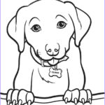 Animals Coloring Pages For Kids Cool Images Animal Coloring Pages Coloringsuite