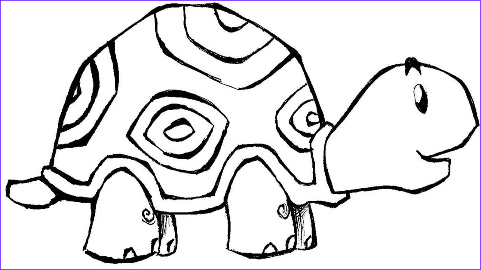 coloring for kids turtle