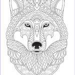 Animals Coloring Pages To Print Best Of Stock Wolf Adult Coloring Page
