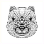 Animals Coloring Pages To Print Elegant Collection Animal Coloring Pages For Adults Best Coloring Pages For