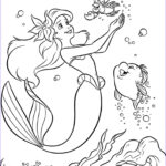 Ariel Coloring Book New Collection Colouring Pages Coloring Pages Disney Princess Little