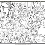 Art Deco Coloring Books New Images Art Deco Coloring Pages Free