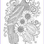 Art Therapy Coloring Book New Photos The Girls Glorious Colouring Book Delightfully Detailed