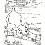 Art Therapy Coloring Book Unique Images 58 Best Images About Coloring Pages Lineart Disney Lion