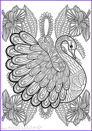 Artistic Coloring Book New Collection Hand Drawing Artistic Swan In Flowers for Adult Coloring