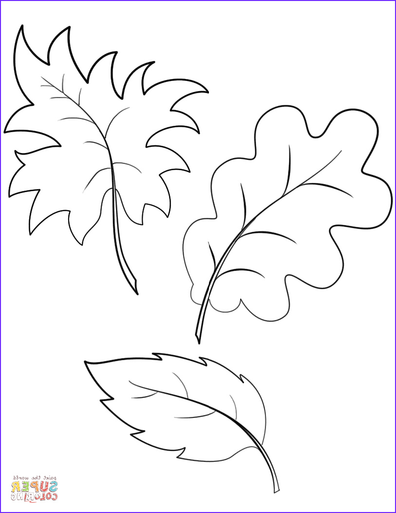 Autumn Coloring Sheets Best Of Gallery Fall Autumn Leaves Coloring Page