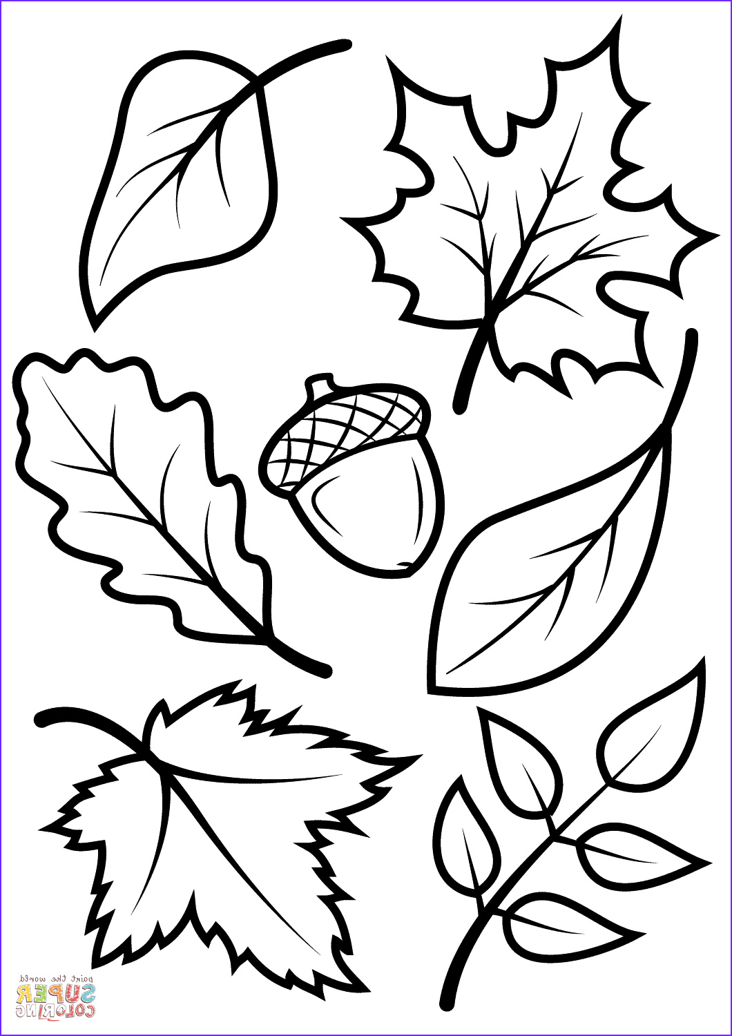 Autumn Coloring Sheets Best Of Image Fall Leaves and Acorn Coloring Page