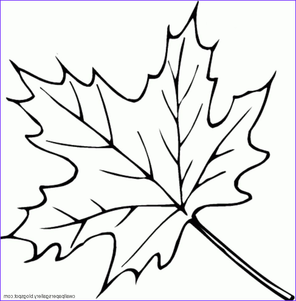 autumn leaves drawing