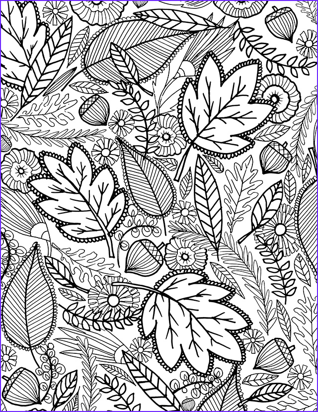 Autumn Coloring Sheets Luxury Photography Alisaburke A Fall Coloring Page for You