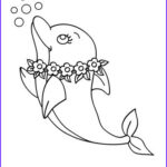 Baby Dolphin Coloring Pages Inspirational Collection 43 Cute Baby Dolphin Coloring Pages Gianfreda