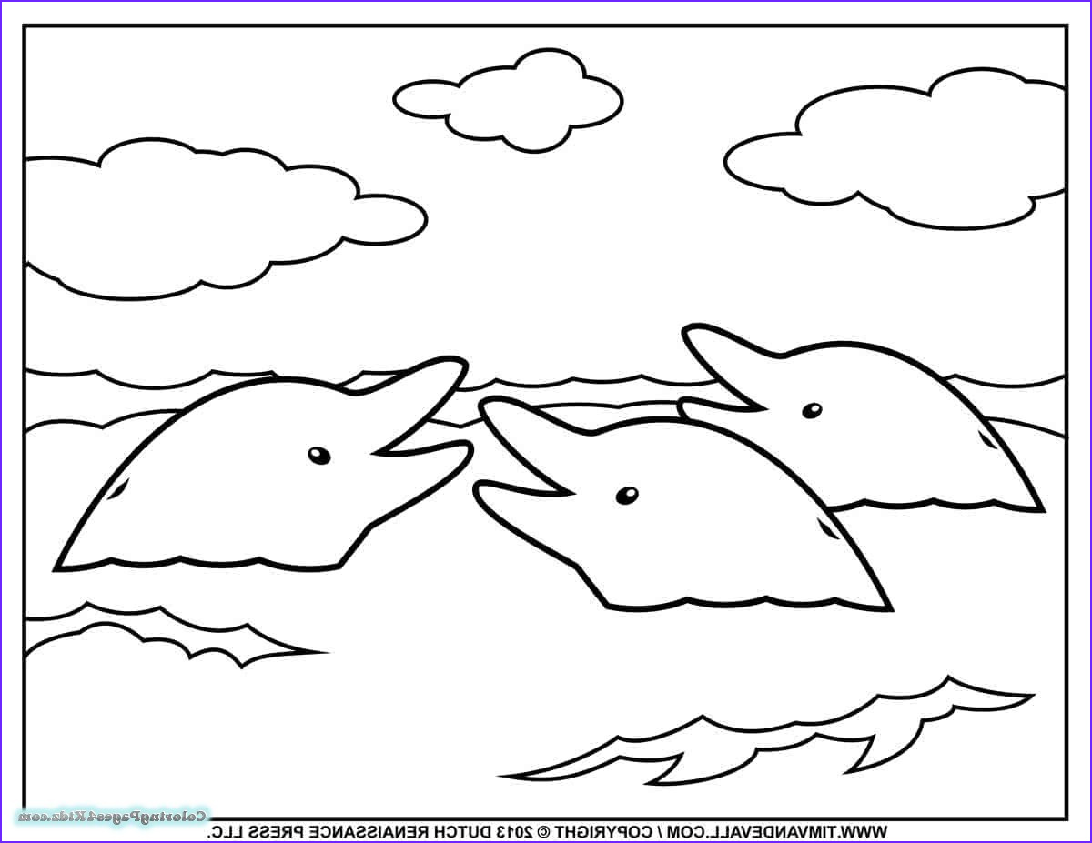 baby dolphin coloring pages 1027