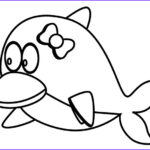 Baby Dolphin Coloring Pages Luxury Photos Dolphin Template Animal Templates