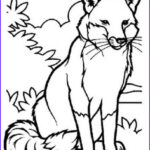 Baby Fox Coloring Page Beautiful Collection Cute Baby Fox Coloring Pages Part 3